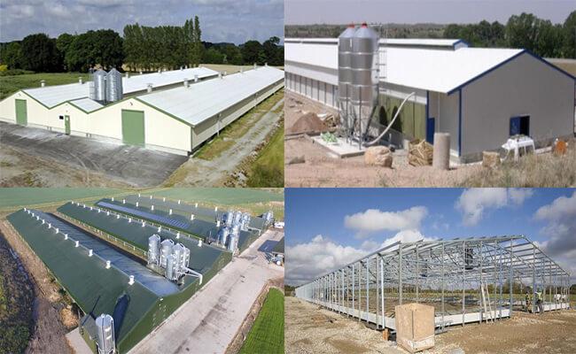 prefab steel poultry building
